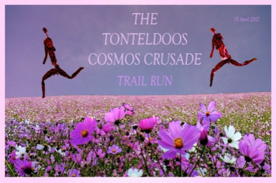 Tonteldoos Cosmos Crusade Trail Run 2017
