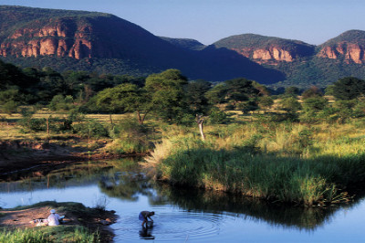 Waterberg Canopy Trail Presented by Trail Hunter Events