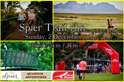 Spier Trail run. Sunday vibes.