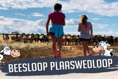 Beesloop Plaaswedloop