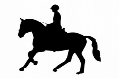 GoSport Social Distance Horse ride at Hazeldean Trails.