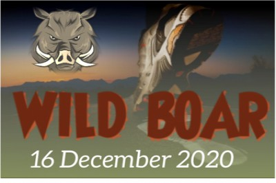 Wild Boar Day and Sunset Trail Run