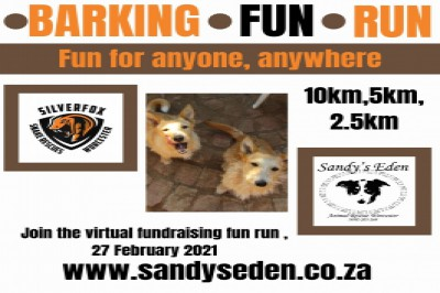 Barking Fun Run