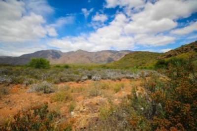 Western Cape MTB Marathon Champs 2021