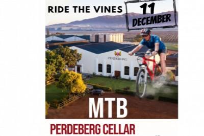 Perderberg MTB